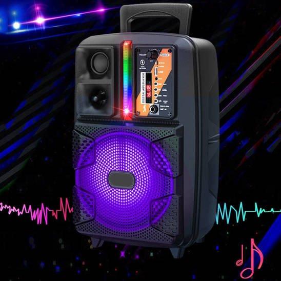 Bluetooth Portable Speaker 8 inch Wireless Outdoor Convenient Speaker (KSC-475) black